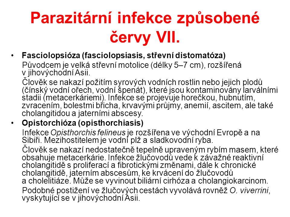 Parazitární infekce způsobené červy VIII.Schistosomóza Jaterní postižení může způsobit S.
