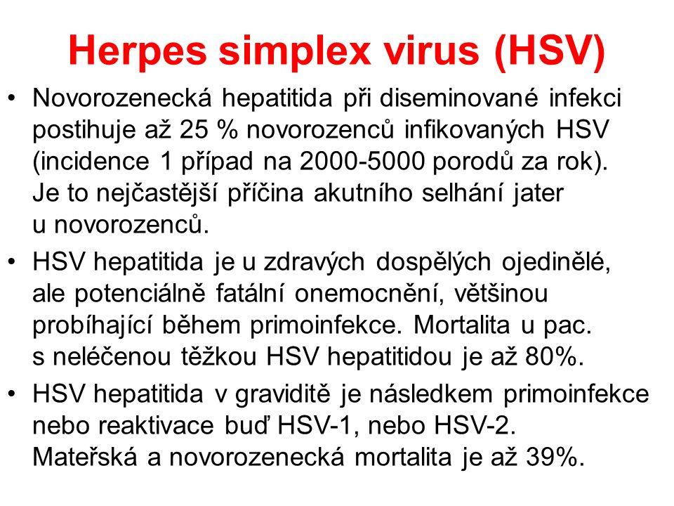 Herpes simplex virus (HSV) Novorozenecká hepatitida při diseminované infekci postihuje až 25 % novorozenců infikovaných HSV (incidence 1 případ na 2000-5000 porodů za rok).