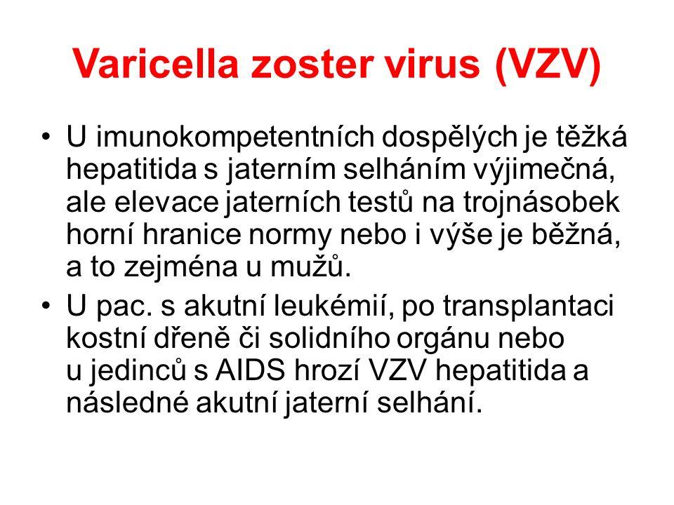 Cytomegalovirus (CMV) I.