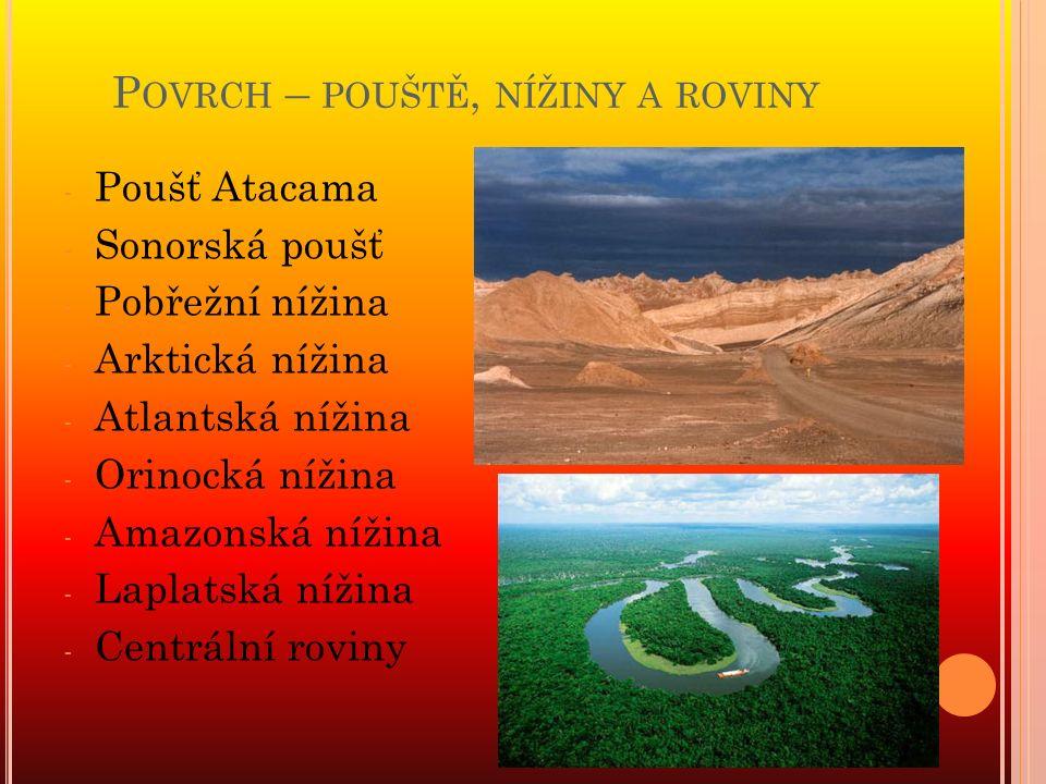 P OVRCH – POUŠTĚ, NÍŽINY A ROVINY - Poušť Atacama - Sonorská poušť - Pobřežní nížina - Arktická nížina - Atlantská nížina - Orinocká nížina - Amazonská nížina - Laplatská nížina - Centrální roviny
