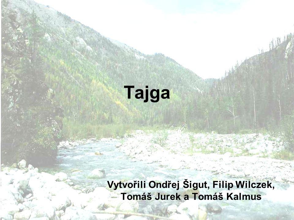 Tajga Vytvořili Ondřej Šigut, Filip Wilczek, Tomáš Jurek a Tomáš Kalmus