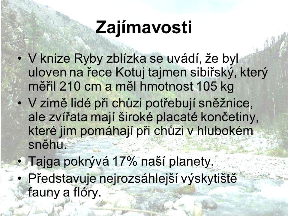 Zajímavosti V knize Ryby zblízka se uvádí, že byl uloven na řece Kotuj tajmen sibiřský, který měřil 210 cm a měl hmotnost 105 kg V zimě lidé při chůzi potřebují sněžnice, ale zvířata mají široké placaté končetiny, které jim pomáhají při chůzi v hlubokém sněhu.