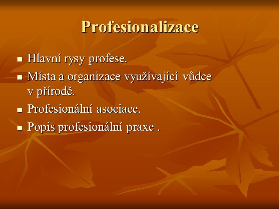 Profesionalizace Hlavní rysy profese. Hlavní rysy profese.