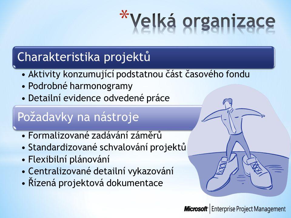 Charakteristika projektů Aktivity konzumující podstatnou část časového fondu Podrobné harmonogramy Detailní evidence odvedené práce Požadavky na nástr