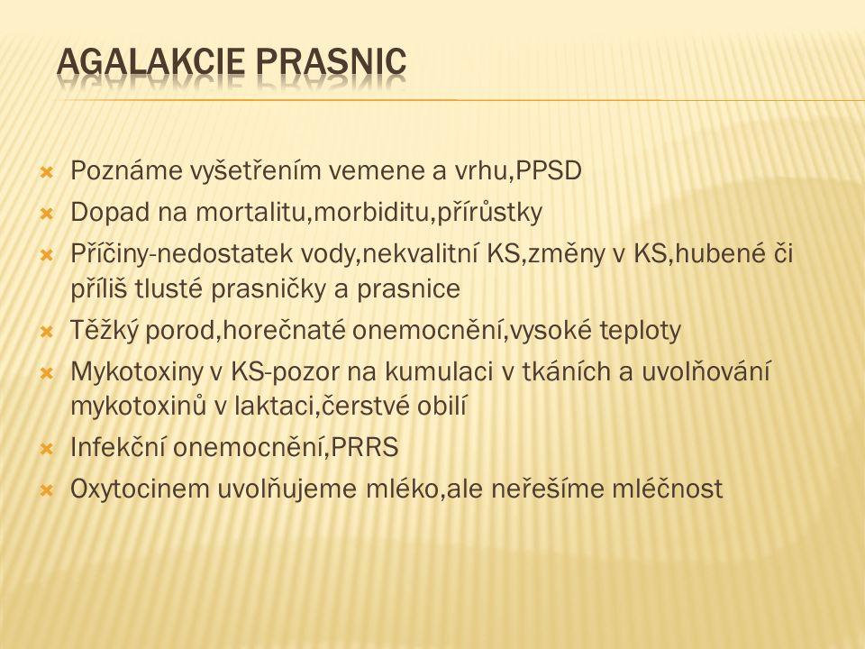  Poznáme vyšetřením vemene a vrhu,PPSD  Dopad na mortalitu,morbiditu,přírůstky  Příčiny-nedostatek vody,nekvalitní KS,změny v KS,hubené či příliš t
