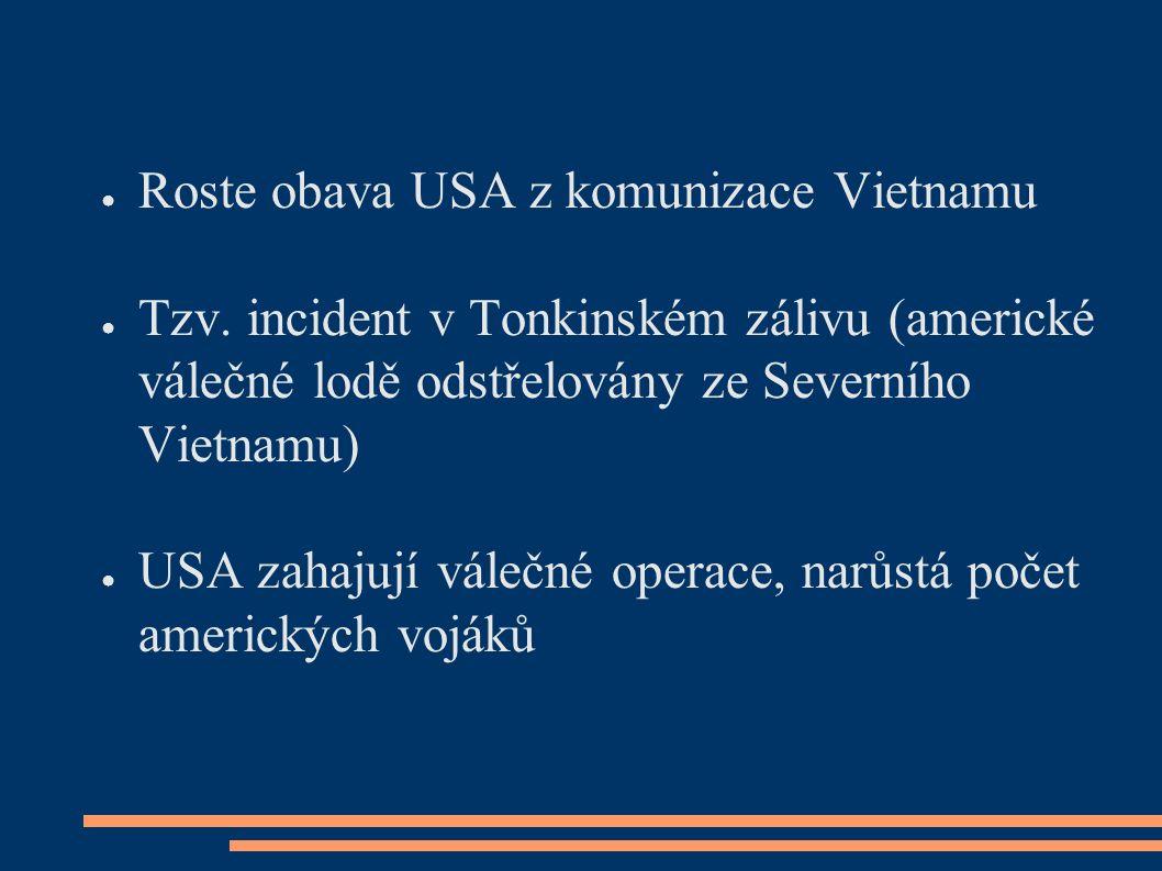 ● Roste obava USA z komunizace Vietnamu ● Tzv.