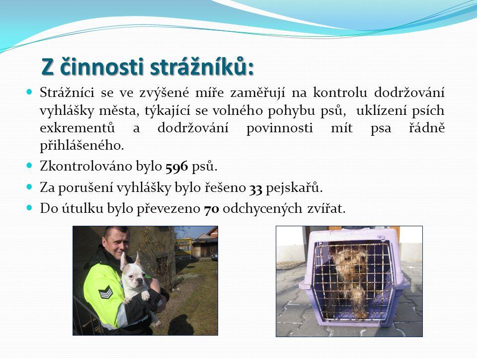 Z činnosti strážníků: Z činnosti strážníků: Strážníci se ve zvýšené míře zaměřují na kontrolu dodržování vyhlášky města, týkající se volného pohybu ps