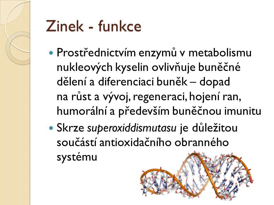 Zinek - funkce Prostřednictvím enzymů v metabolismu nukleových kyselin ovlivňuje buněčné dělení a diferenciaci buněk – dopad na růst a vývoj, regeneraci, hojení ran, humorální a především buněčnou imunitu Skrze superoxiddismutasu je důležitou součástí antioxidačního obranného systému
