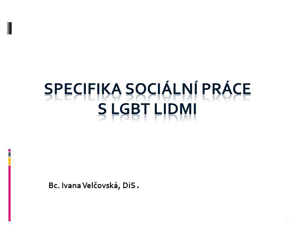 Bc. Ivana Velčovská, DiS. 1