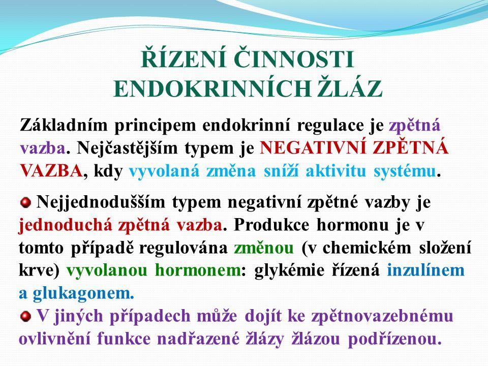 ŘÍZENÍ ČINNOSTI ENDOKRINNÍCH ŽLÁZ Základním principem endokrinní regulace je zpětná vazba.