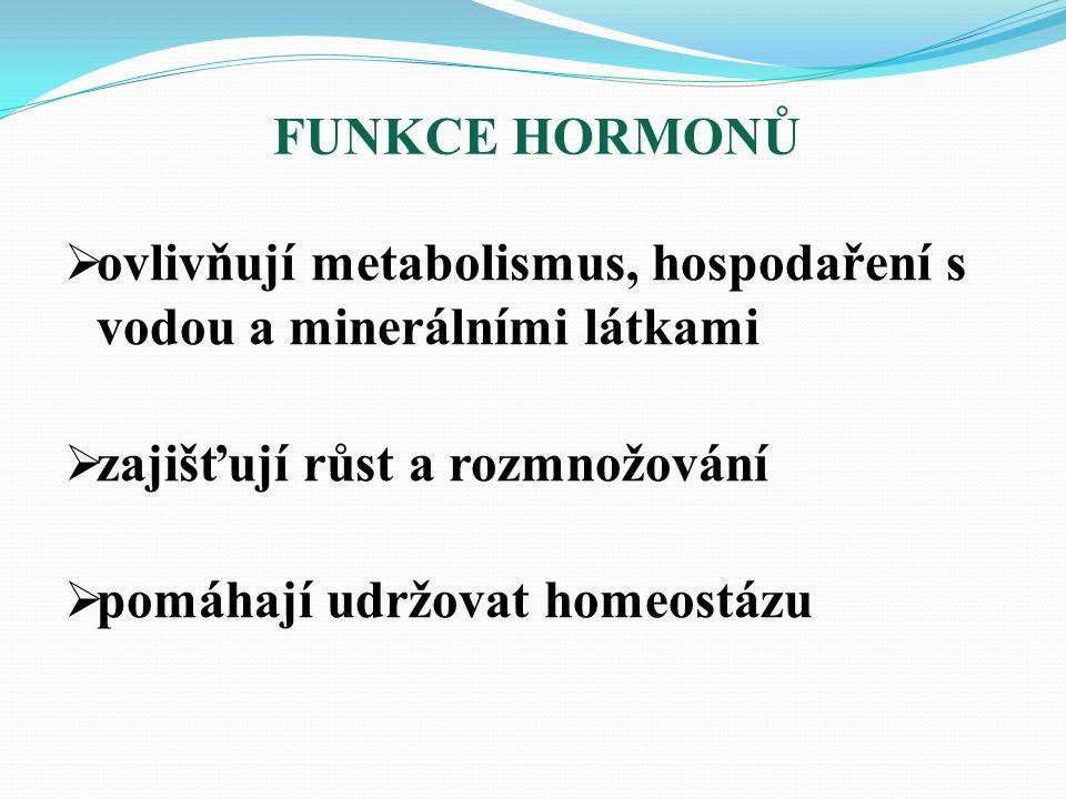  ovlivňují metabolismus, hospodaření s vodou a minerálními látkami  zajišťují růst a rozmnožování  pomáhají udržovat homeostázu FUNKCE HORMONŮ