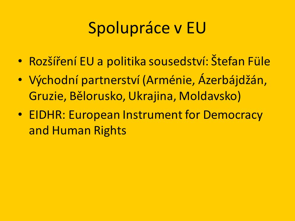 Spolupráce v EU Rozšíření EU a politika sousedství: Štefan Füle Východní partnerství (Arménie, Ázerbájdžán, Gruzie, Bělorusko, Ukrajina, Moldavsko) EIDHR: European Instrument for Democracy and Human Rights