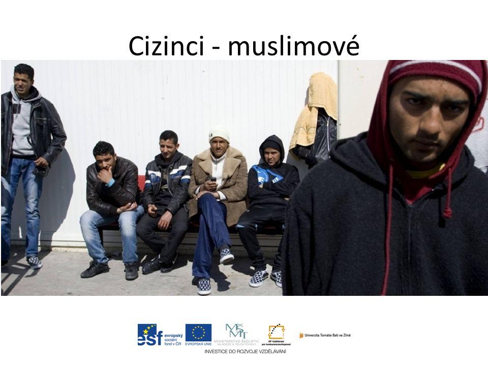 Cizinci - muslimové