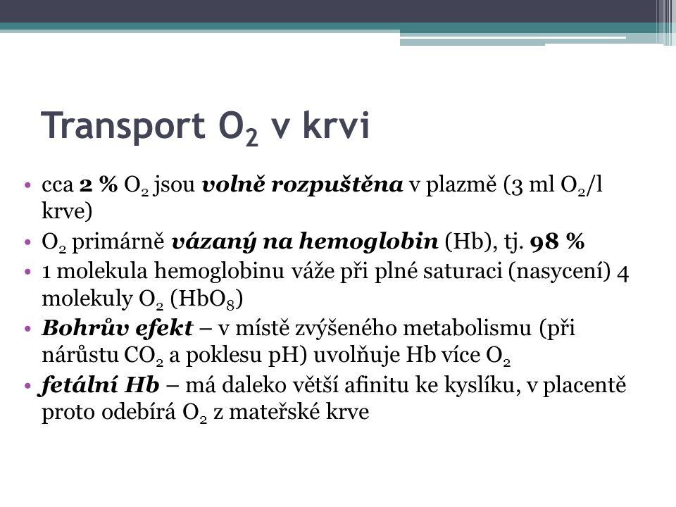 Transport O 2 v krvi cca 2 % O 2 jsou volně rozpuštěna v plazmě (3 ml O 2 /l krve) O 2 primárně vázaný na hemoglobin (Hb), tj.