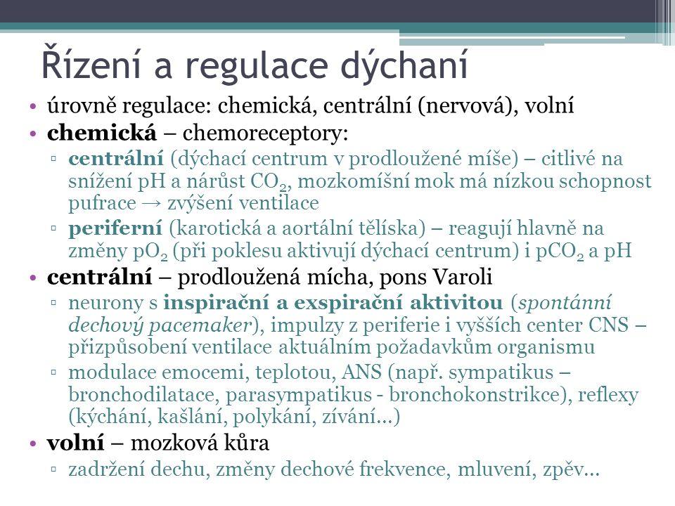 Řízení a regulace dýchaní úrovně regulace: chemická, centrální (nervová), volní chemická – chemoreceptory: ▫centrální (dýchací centrum v prodloužené míše) – citlivé na snížení pH a nárůst CO 2, mozkomíšní mok má nízkou schopnost pufrace → zvýšení ventilace ▫periferní (karotická a aortální tělíska) – reagují hlavně na změny pO 2 (při poklesu aktivují dýchací centrum) i pCO 2 a pH centrální – prodloužená mícha, pons Varoli ▫neurony s inspirační a exspirační aktivitou (spontánní dechový pacemaker), impulzy z periferie i vyšších center CNS – přizpůsobení ventilace aktuálním požadavkům organismu ▫modulace emocemi, teplotou, ANS (např.