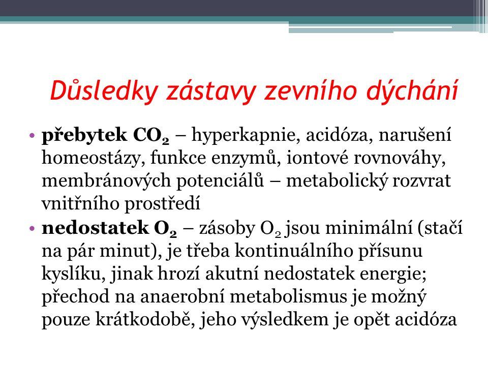 Důsledky zástavy zevního dýchání přebytek CO 2 – hyperkapnie, acidóza, narušení homeostázy, funkce enzymů, iontové rovnováhy, membránových potenciálů – metabolický rozvrat vnitřního prostředí nedostatek O 2 – zásoby O 2 jsou minimální (stačí na pár minut), je třeba kontinuálního přísunu kyslíku, jinak hrozí akutní nedostatek energie; přechod na anaerobní metabolismus je možný pouze krátkodobě, jeho výsledkem je opět acidóza