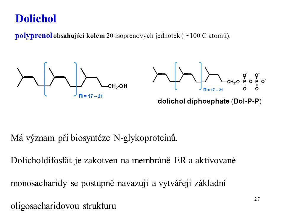 27 Má význam při biosyntéze N-glykoproteinů.