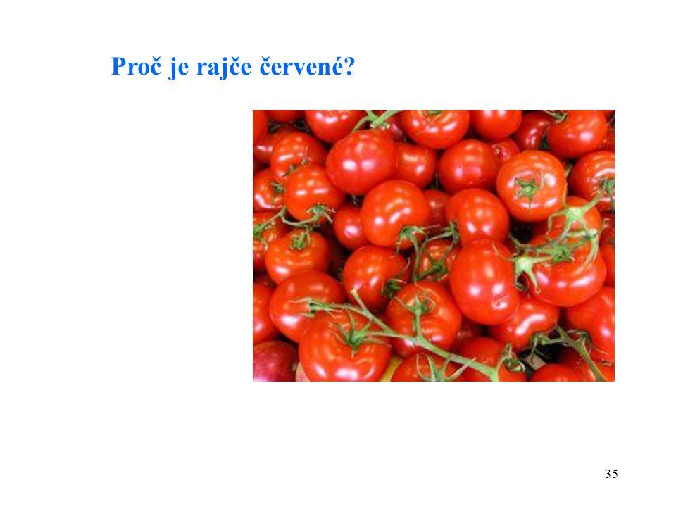 35 Proč je rajče červené