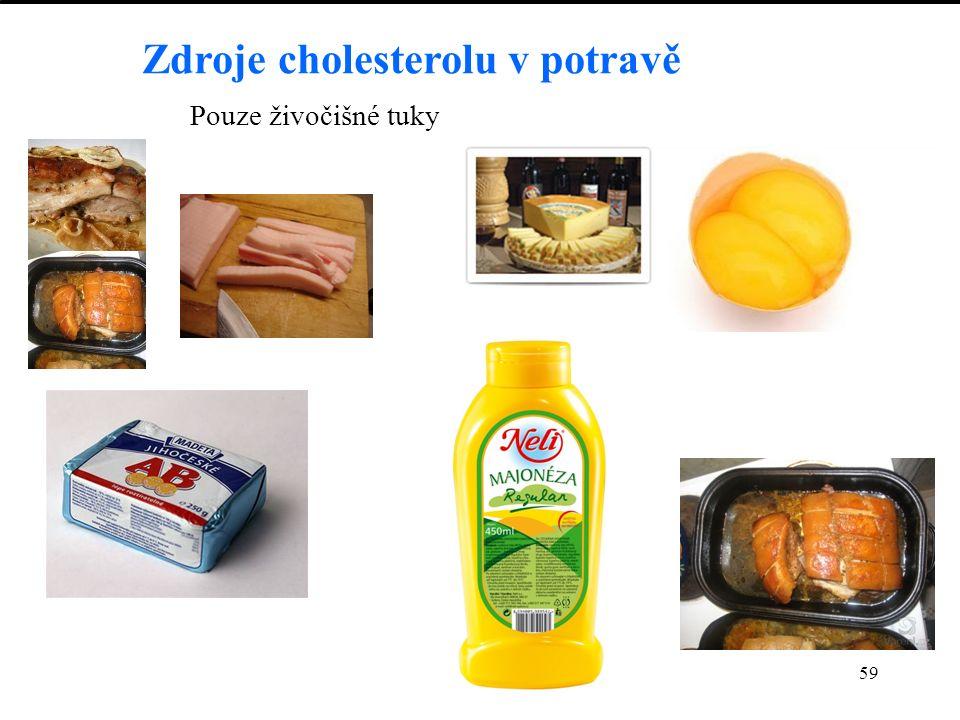 59 Zdroje cholesterolu v potravě Pouze živočišné tuky
