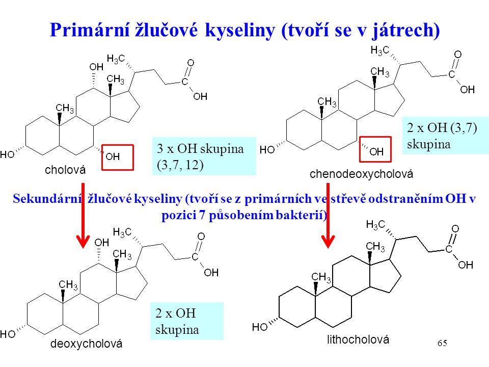 65 Primární žlučové kyseliny (tvoří se v játrech) Sekundární žlučové kyseliny (tvoří se z primárních ve střevě odstraněním OH v pozici 7 působením bakterií) cholová chenodeoxycholová deoxycholová lithocholová 3 x OH skupina (3,7, 12) 2 x OH (3,7) skupina 2 x OH skupina
