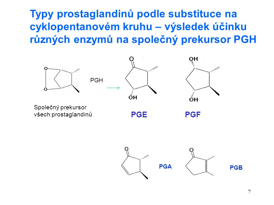 7 Typy prostaglandinů podle substituce na cyklopentanovém kruhu – výsledek účinku různých enzymů na společný prekursor PGH PGEPGF PGH Společný prekursor všech prostaglandinů PGA PGB