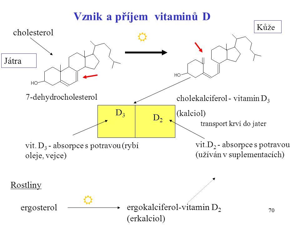 70 7-dehydrocholesterol cholekalciferol - vitamin D 3 (kalciol) Kůže cholesterol Játra vit.