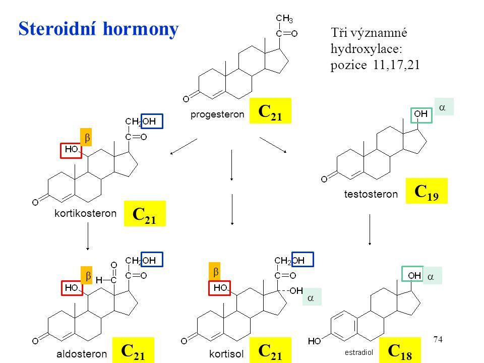 74 Steroidní hormony kortikosteron testosteron kortisolaldosteron C 21 C 19 C 18 progesteron Tři významné hydroxylace: pozice 11,17,21 β    β β