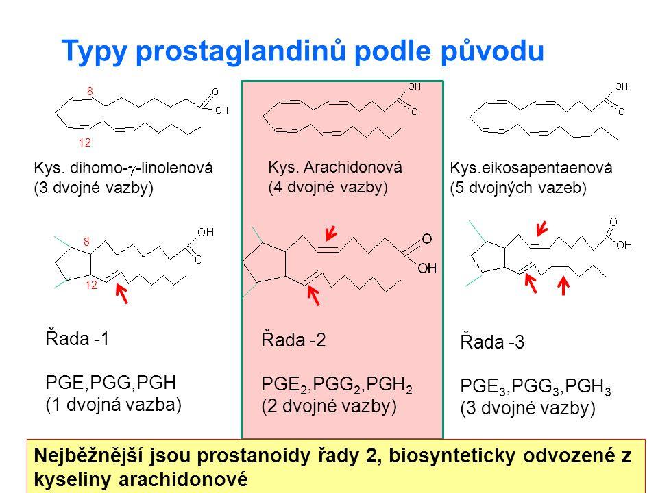 19 Peptidové leukotrieny (leukotrieny třídy C, D, E) LTC na C6 se váže: glutathion (  -Glu  Cys  Gly) LTD cysteinyl-glycin LTE cystein OH S Cys-Gly LTD 4 prozánětlivý účinek chemotakticky přitahují neutrofily, mohou podporovat produkci reaktivních forem kyslíku.