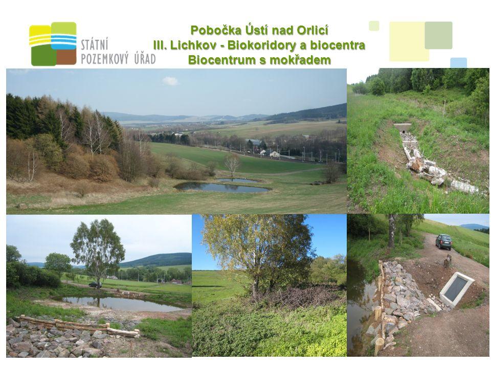 13 Pobočka Ústí nad Orlicí III. Lichkov - Biokoridory a biocentra Biocentrum s mokřadem