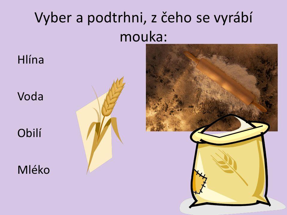 Vyber a podtrhni, z čeho se vyrábí mouka: Hlína Voda Obilí Mléko