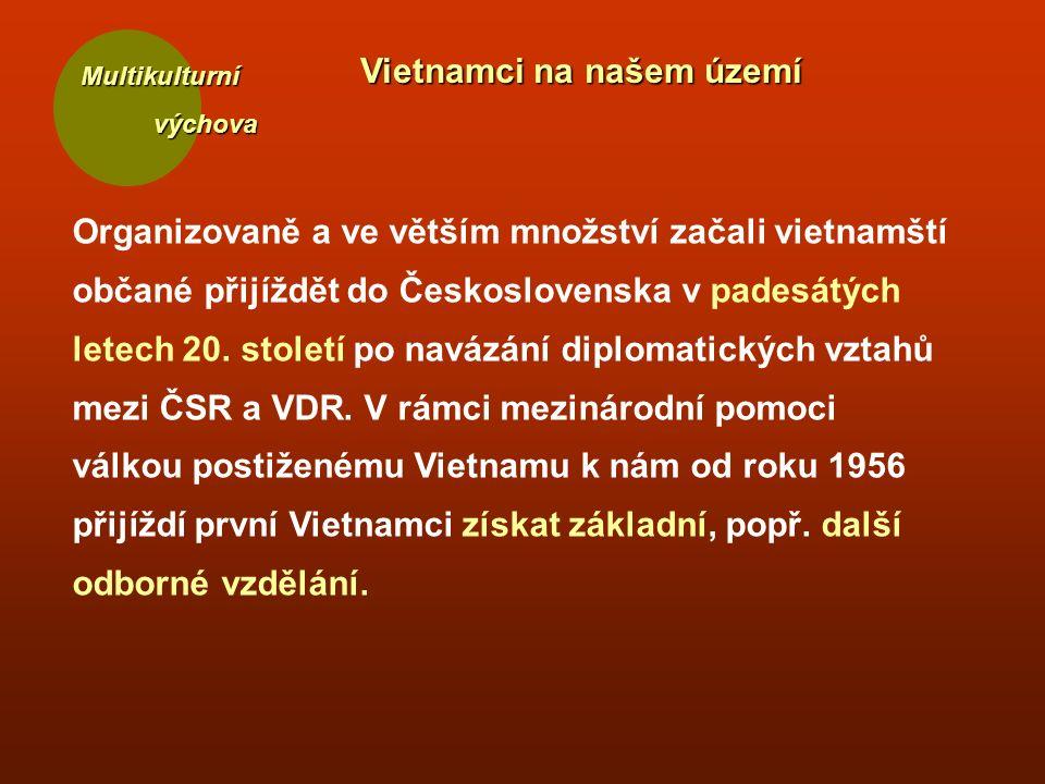 Multikulturní výchova výchova Vietnamci na našem území Organizovaně a ve větším množství začali vietnamští občané přijíždět do Československa v padesátých letech 20.