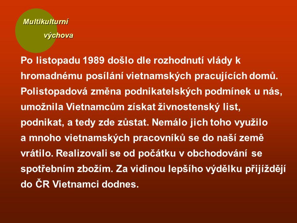 Multikulturní výchova výchova Po listopadu 1989 došlo dle rozhodnutí vlády k hromadnému posílání vietnamských pracujících domů.
