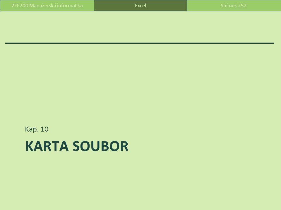 KARTA SOUBOR Kap. 10 ExcelSnímek 2522FF200 Manažerská informatika