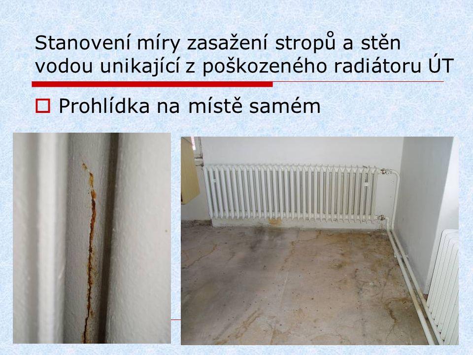 Stanovení míry zasažení stropů a stěn vodou unikající z poškozeného radiátoru ÚT  Prohlídka na místě samém