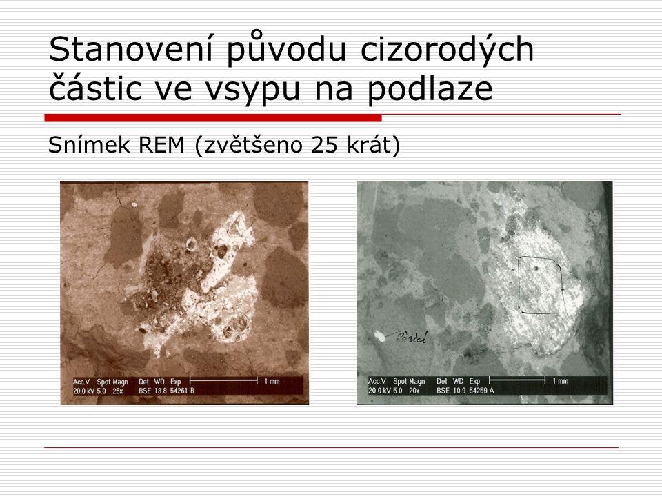 Stanovení původu cizorodých částic ve vsypu na podlaze Snímek REM (zvětšeno 25 krát)