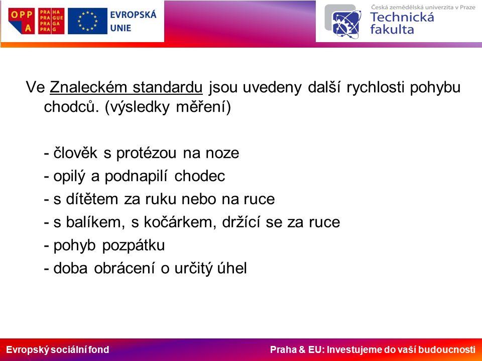 Evropský sociální fond Praha & EU: Investujeme do vaší budoucnosti Ve Znaleckém standardu jsou uvedeny další rychlosti pohybu chodců.