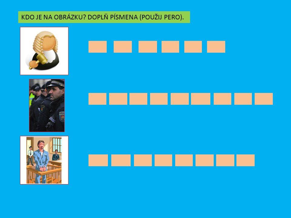 ANO – NE MĚSTSKÁ POLICIE ŘEŠÍ KRIMINALITU VE MĚSTĚ DOPRAVNÍ POLICIE ŘÍDÍ PROVOZ NA KŘIŽOVATKÁCH SOUDY ROZHODUJÍ O VINĚ A TRESTU PYROTECHNICI LIKVIDUJÍ NEVYBUCHLOU MUNICI Z VÁLKY KRIMINALISTÉ VYŠETŘUJÍ KRÁDEŽE POLICISTÉ CHODÍ V UNIFORMÁCH SPORY MEZI OBČANY ŘEŠÍ SOUDCE ANONE ANO NE