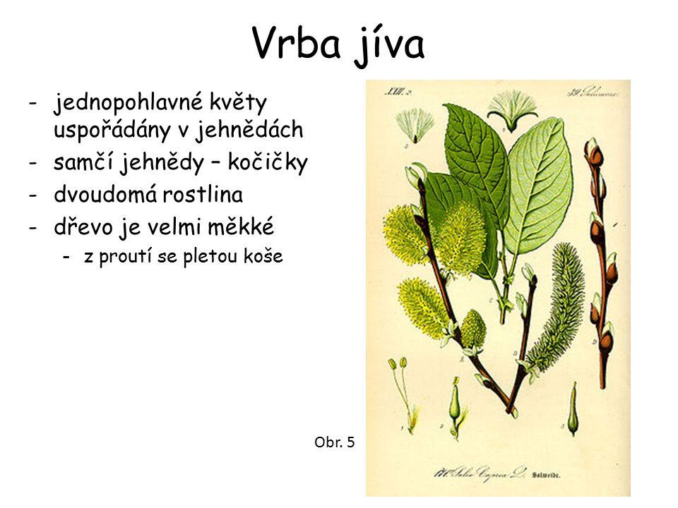 Použité zdroje ČABRADOVÁ, Mgr.Eva; HASCH, RNDr. František; SEJPKA, Mgr.