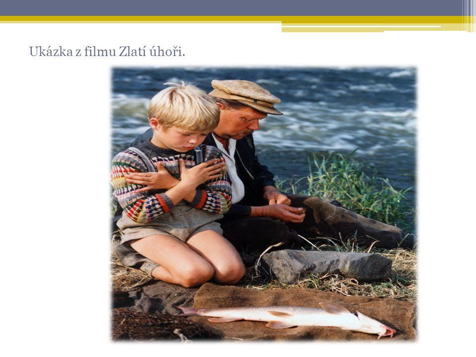Ukázka z filmu Zlatí úhoři.