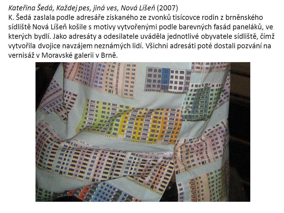 Kateřina Šedá, Každej pes, jiná ves, Nová Líšeň (2007) K.