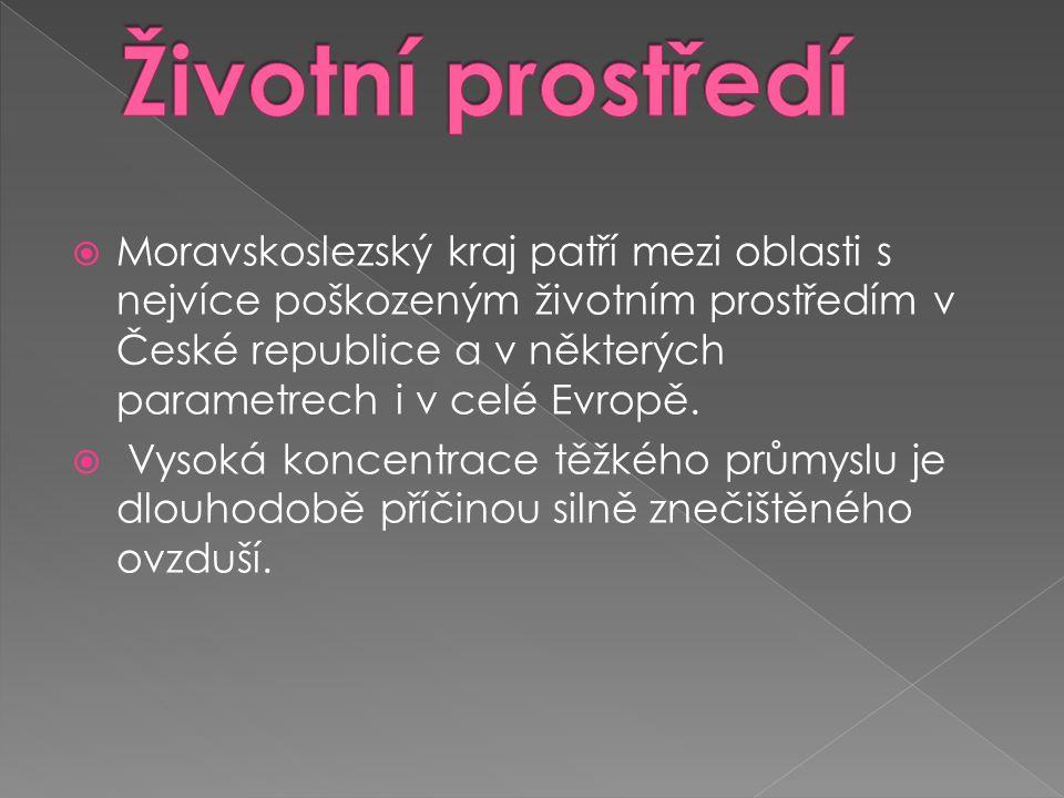  Moravskoslezský kraj patří mezi oblasti s nejvíce poškozeným životním prostředím v České republice a v některých parametrech i v celé Evropě.  Vyso