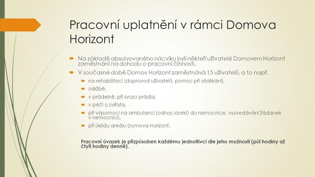 Pracovní uplatnění mimo Domov Horizont  V roce 2014 se nám podařilo navázat spolupráci i s externími zaměstnavateli mimo Domov Horizont, a to s Nemocnicí Kyjov a Technickými službami Kyjov.