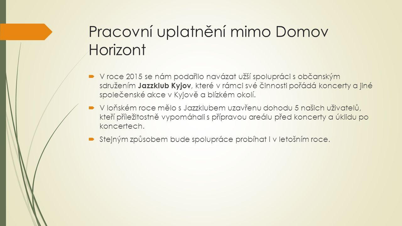 Pracovní uplatnění mimo Domov Horizont  V dubnu 2015 jsme oslovili další firmu, která v inzerci nabízela brigádu roznos letáků v Kyjově.