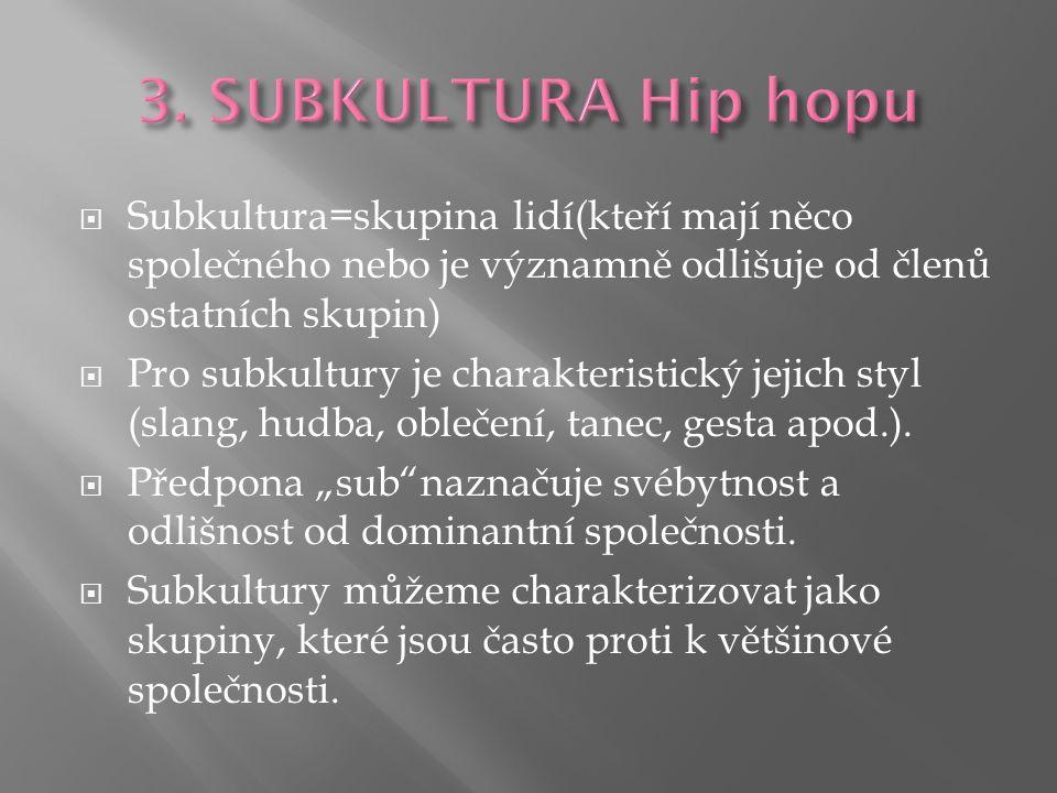  Subkultura=skupina lidí(kteří mají něco společného nebo je významně odlišuje od členů ostatních skupin)  Pro subkultury je charakteristický jejich styl (slang, hudba, oblečení, tanec, gesta apod.).