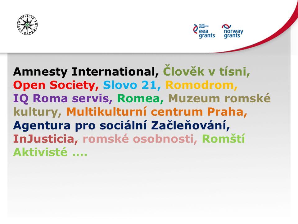 Amnesty International, Člověk v tísni, Open Society, Slovo 21, Romodrom, IQ Roma servis, Romea, Muzeum romské kultury, Multikulturní centrum Praha, Agentura pro sociální Začleňování, InJusticia, romské osobnosti, Romští Aktivisté ….