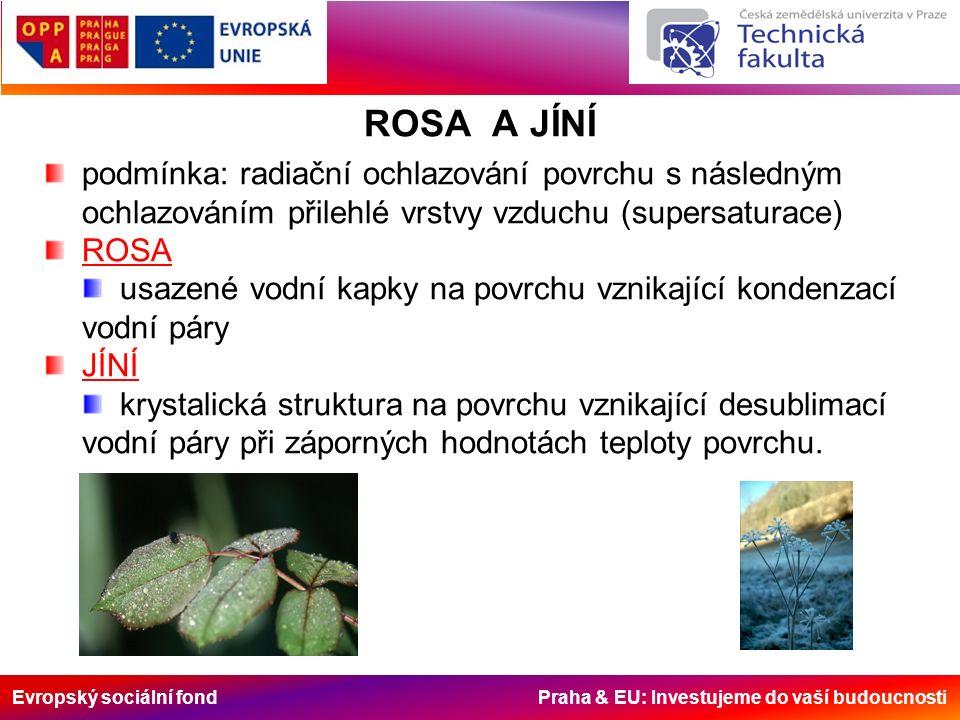 Evropský sociální fond Praha & EU: Investujeme do vaší budoucnosti ROSA A JÍNÍ podmínka: radiační ochlazování povrchu s následným ochlazováním přilehlé vrstvy vzduchu (supersaturace) ROSA usazené vodní kapky na povrchu vznikající kondenzací vodní páry JÍNÍ krystalická struktura na povrchu vznikající desublimací vodní páry při záporných hodnotách teploty povrchu.