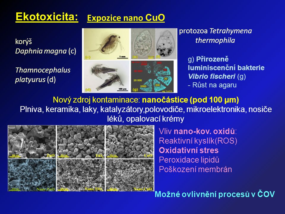 Ekotoxicita: g) Přirozeně luminiscenční bakterie Vibrio fischeri (g) - Růst na agaru korýš Daphnia magna (c) Thamnocephalus platyurus (d) protozoa Tet