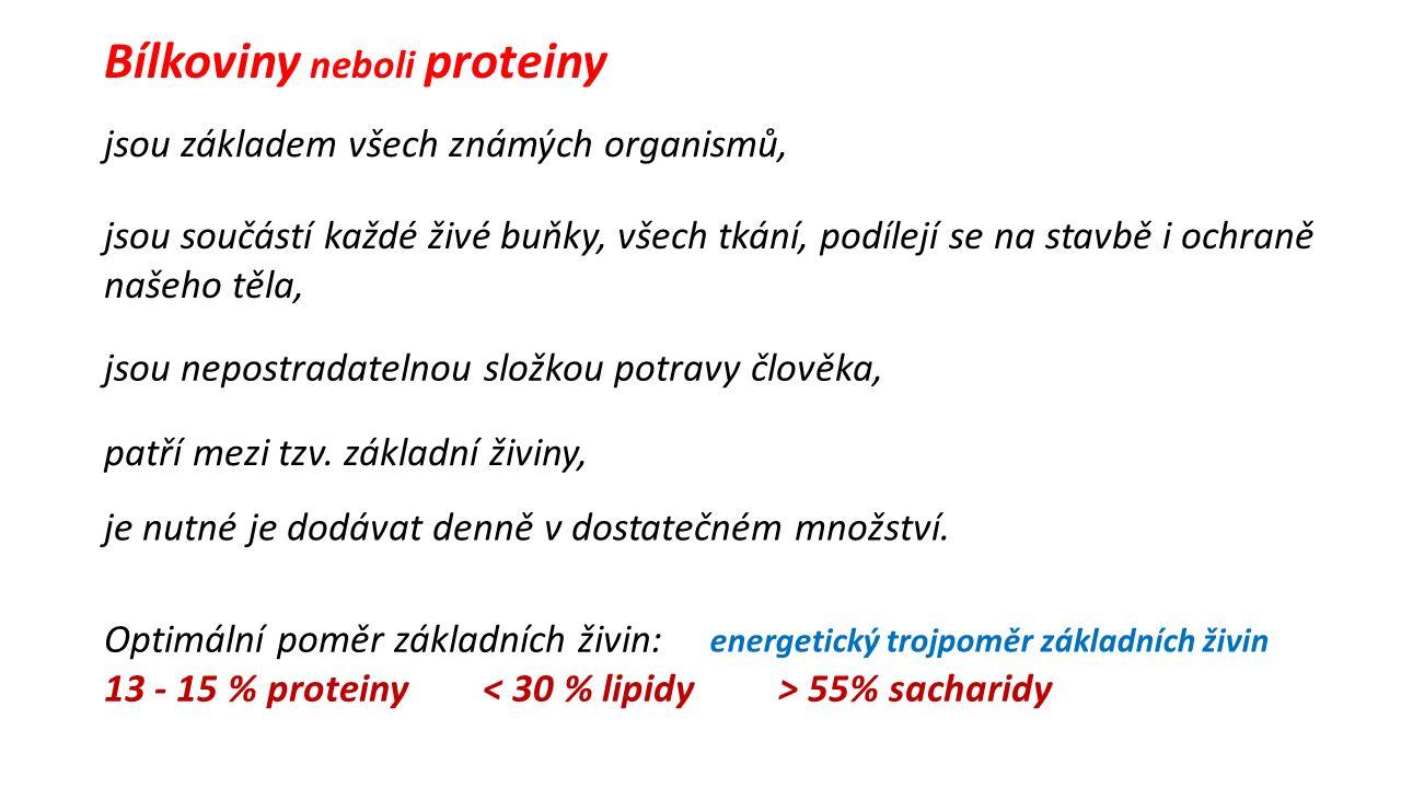 Bílkoviny neboli proteiny patří mezi tzv.