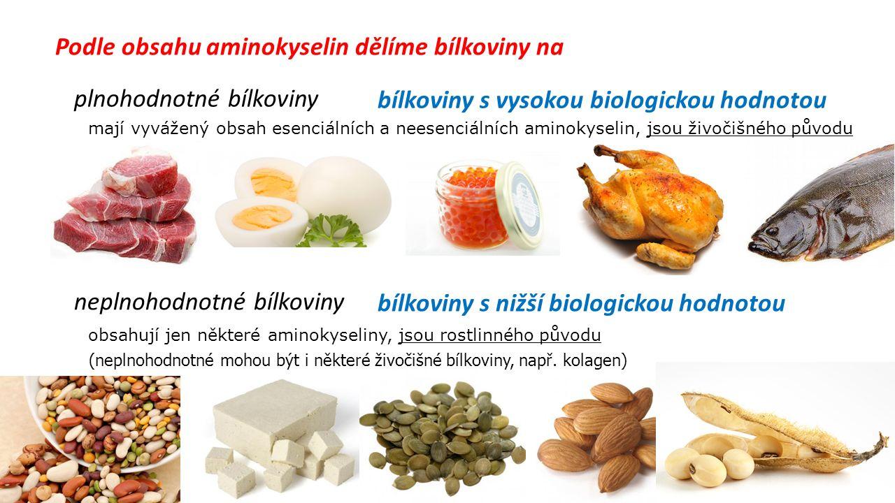 Podle obsahu aminokyselin dělíme bílkoviny na plnohodnotné bílkoviny neplnohodnotné bílkoviny mají vyvážený obsah esenciálních a neesenciálních aminokyselin, jsou živočišného původu obsahují jen některé aminokyseliny, jsou rostlinného původu bílkoviny s vysokou biologickou hodnotou bílkoviny s nižší biologickou hodnotou (neplnohodnotné mohou být i některé živočišné bílkoviny, např.