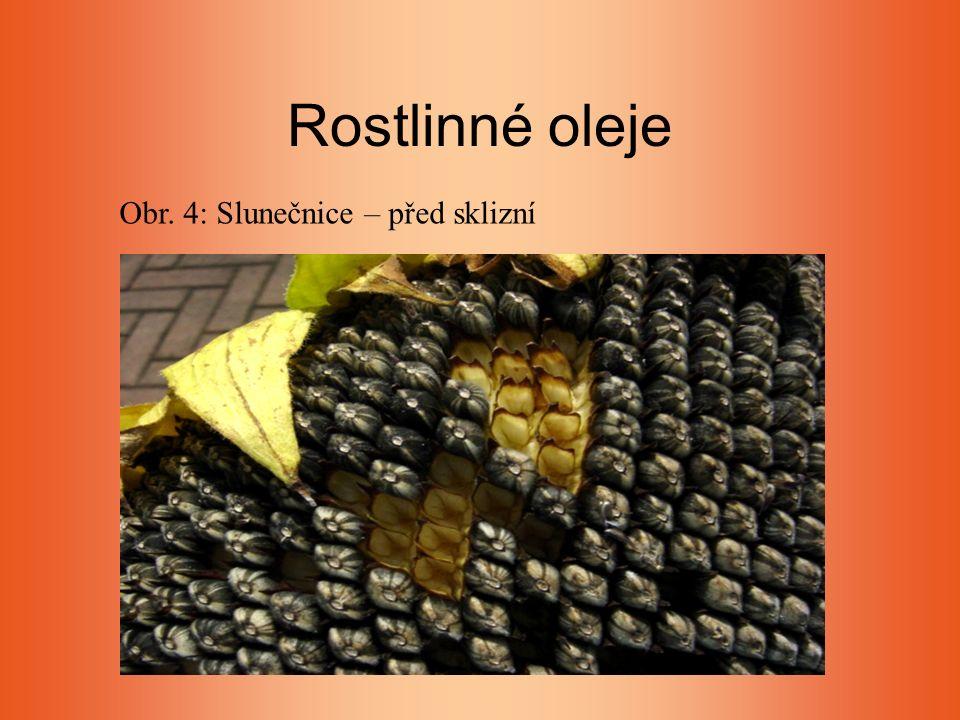Rostlinné oleje Obr. 4: Slunečnice – před sklizní